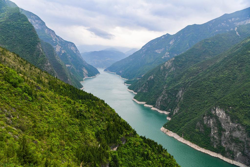 长江流域生态环境保护成效如何?这份报告如是说