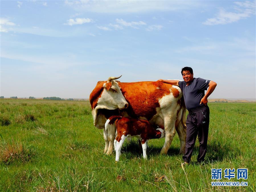 """(奋斗百年路 启航新征程·""""七一勋章""""获得者·图文互动)(4)""""草原之子""""廷·巴特尔:让草原绿起来,帮牧民富起来"""