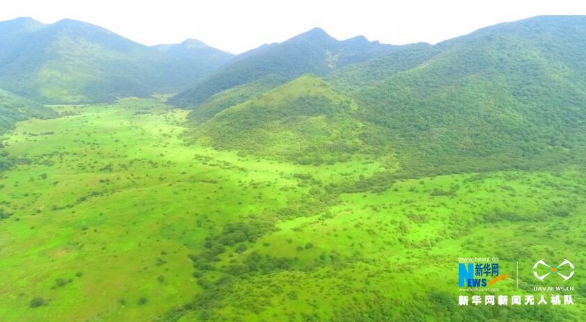 航拍世界自然遗产地重庆五里坡保护区