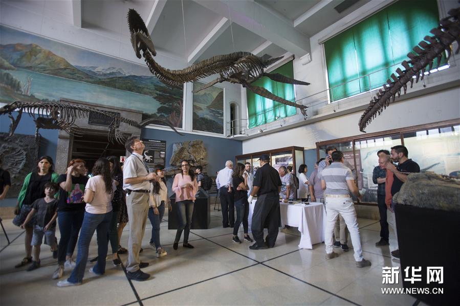 (國際)(1)阿根廷修復罕見的蛇頸龍骨架化石