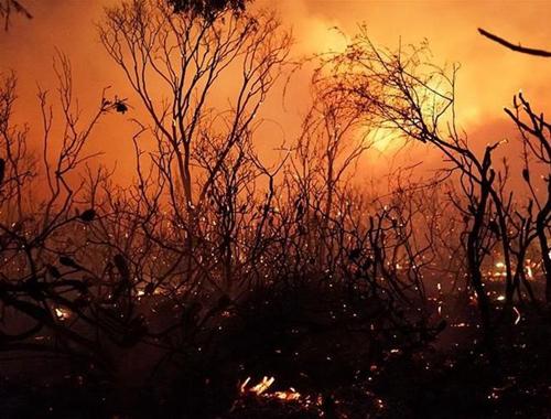 澳大利亞昆士蘭山火持續燃燒 數千居民撤離