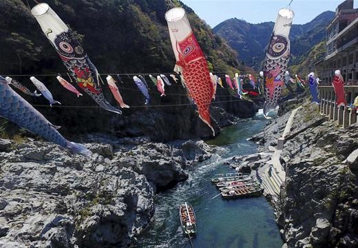 日本山谷懸挂五彩鯉魚旗迎接男孩節
