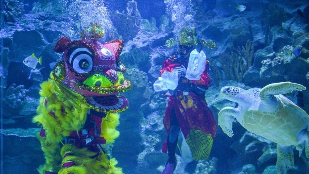 吉隆坡:水中舞獅