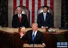 特朗普提4大移民改革支柱