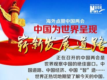 海外点赞中国两会