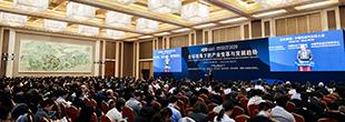 2020中國電動汽車百人會