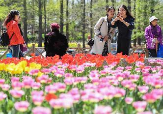 首屆青島賞花會開幕
