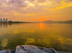 棲息雲龍湖