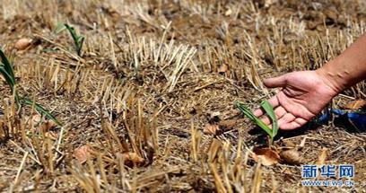 頻發的汛期抗旱困局警示了什麼
