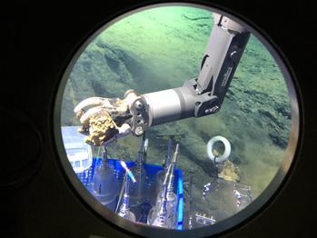 深潛馬裏亞納海溝——海底世界見聞記