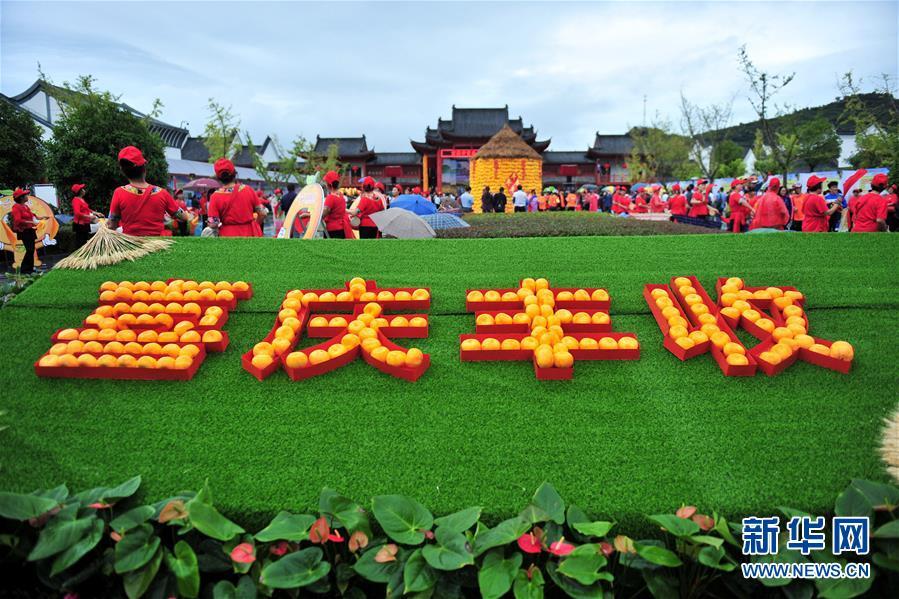 聚焦首个中国农民丰收节