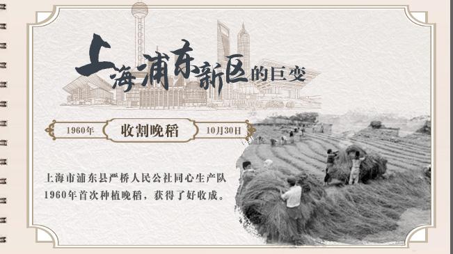 【逐影尋聲70畫】上海浦東新區的巨變