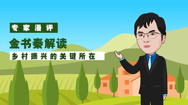 【專家漫評】金書秦解讀鄉村振興的關鍵所在