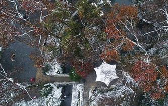 雪後岳麓景如畫