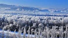 新疆喀什河現霧凇奇觀 霧氣蒸騰美如仙境