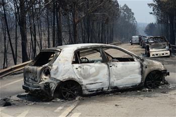 葡森林火災造成至少62人死亡 政府宣布進入緊急狀態