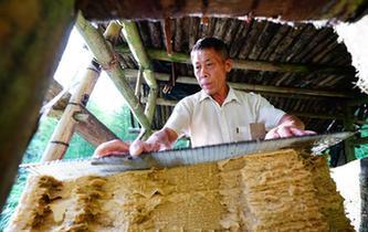 瑤寨裏的古法造紙技藝