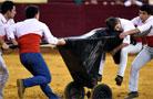 里斯本举办首届斗牛文化节 图