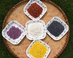五色糯米飯