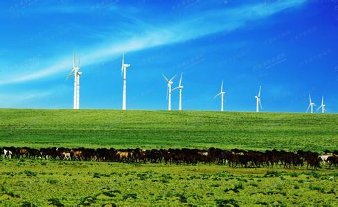 綠色保險:將資源資本引向綠色經濟
