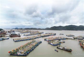臺風來襲 船只歸港