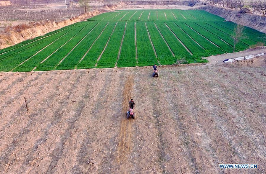 CHINA-SPRING FARMING (CN)