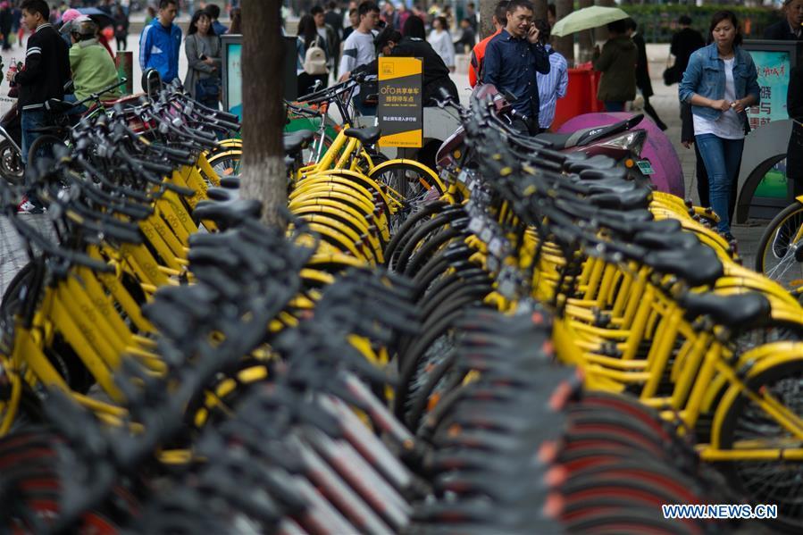 CHINA-KUNMING-SHARED BICYCLE (CN)