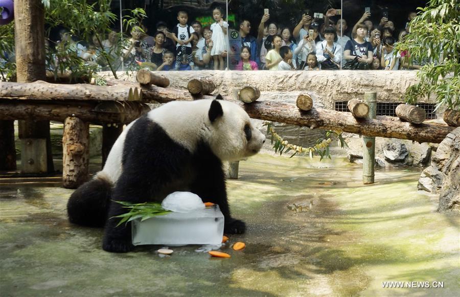 CHINA-BEIJING-HEATSTROKE PREVENTION-ANIMALS(CN)
