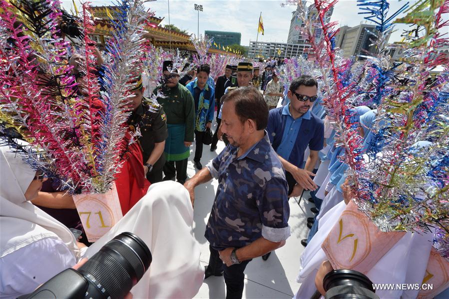 brunei sultan images