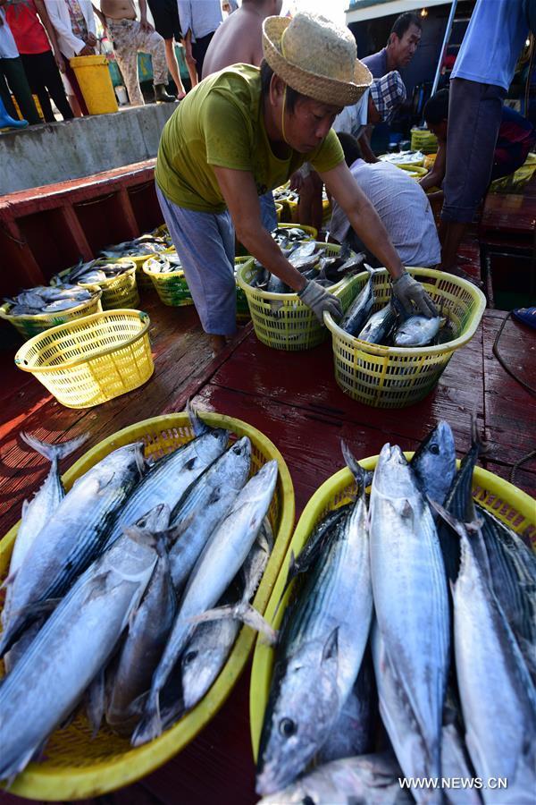 #CHINA-HAINAN-FISHING BAN-END (CN)