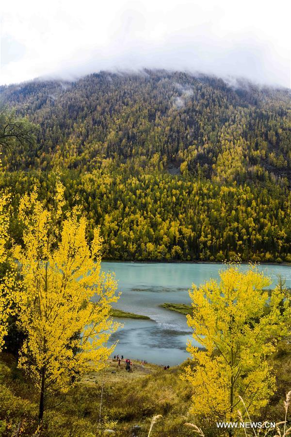 CHINA-XINJIANG-KANAS-AUTUMN SCENERY (CN)