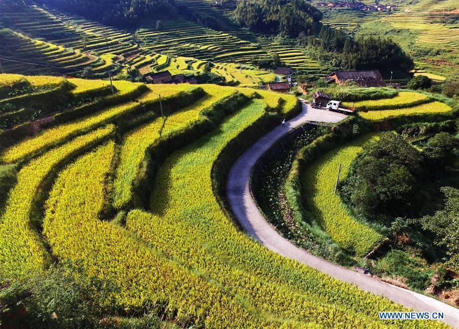 CHINA-FUJIAN-TERRACED FIELD (CN)