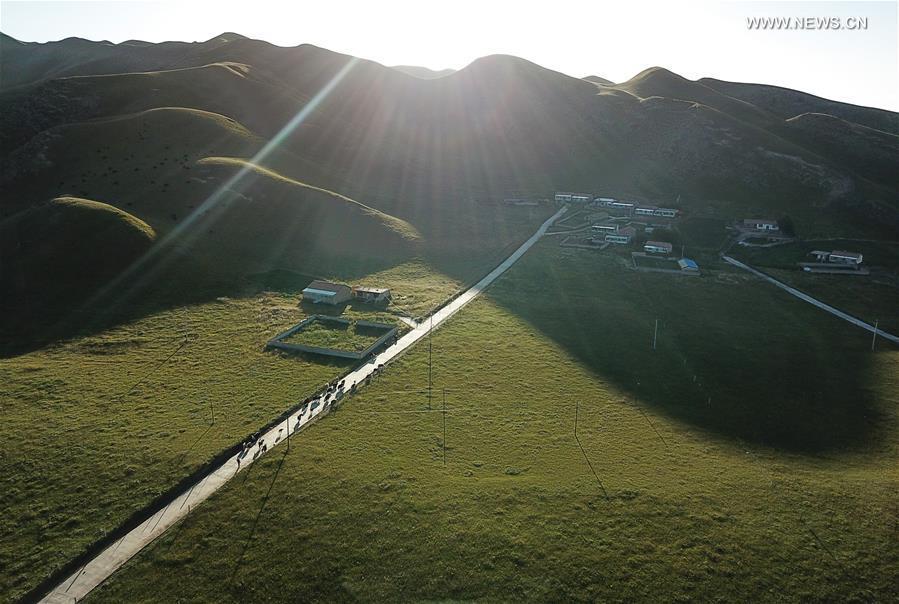 CHINA-QINGHAI-AUTUMN SCENERY(CN)