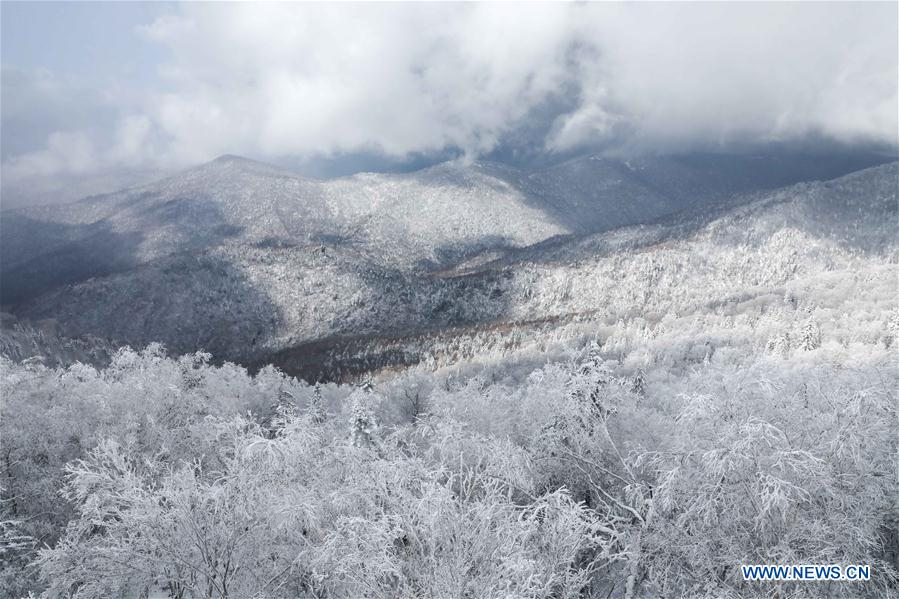 CHINA-HEILONGJIANG-MUDANJIANG-SNOW SCENERY (CN)