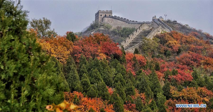 CHINA-BEIJING-TOURISM-AUTUMN (CN)