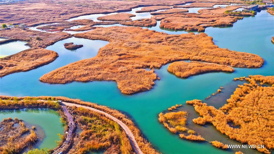 #CHINA-GANSU-ZHANGYE-WETLAND (CN)