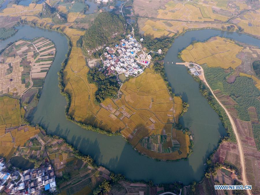 CHINA-GUANGXI-PADDY FIELD(CN)