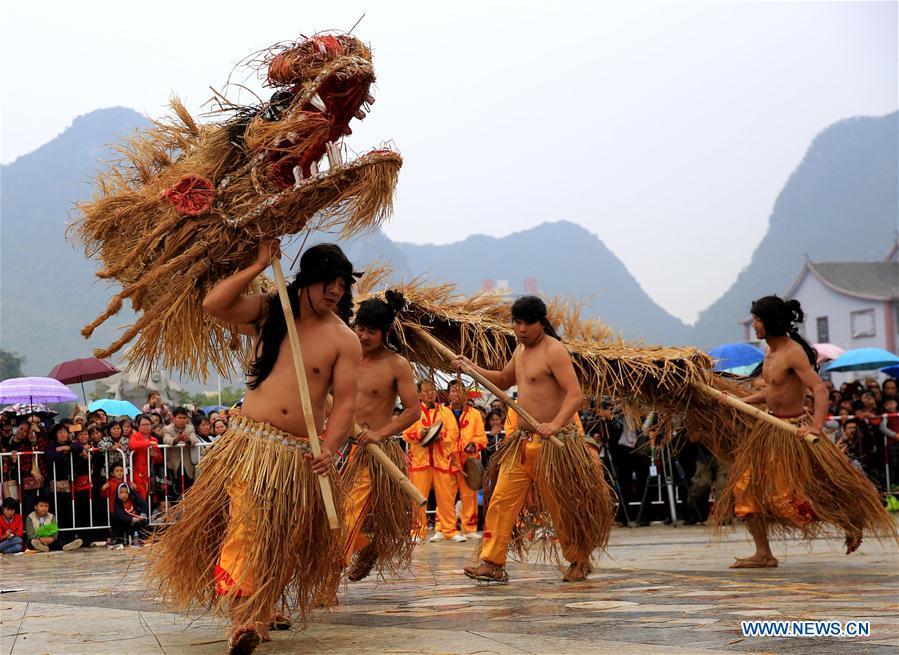 #CHINA-GUANGXI-LUOCHENG-GRASS DRAGON DANCE (CN)