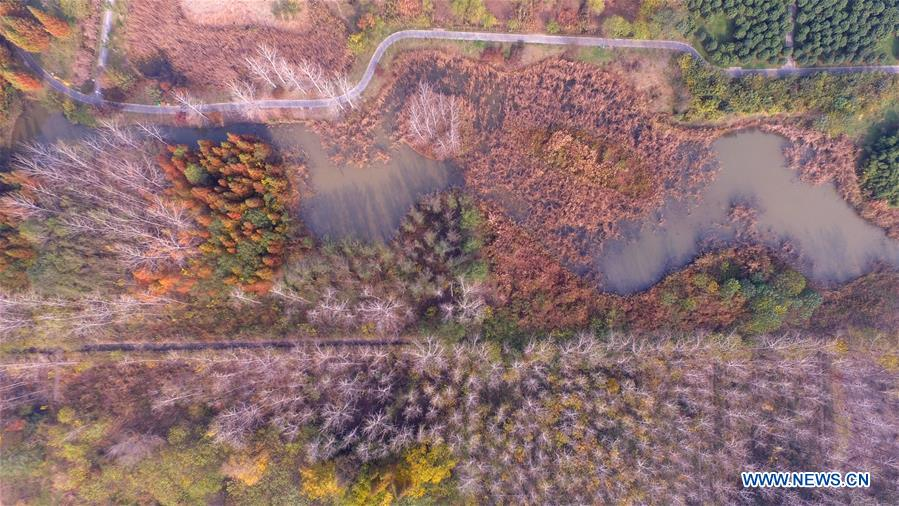 #CHINA-AUTUMN SCENERY-AERIAL VIEW (CN)