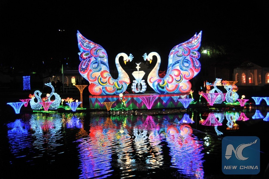 The Lights Of Floating Swans Switch On As Pre Show For Local Media On Nov.  20, 2017 At The Fair Park Of Dallas, Texas, The United States. (Xinhua/Liu  Liwei)
