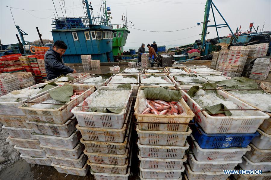 CHINA-QINGDAO-WINTER-FISHING (CN)