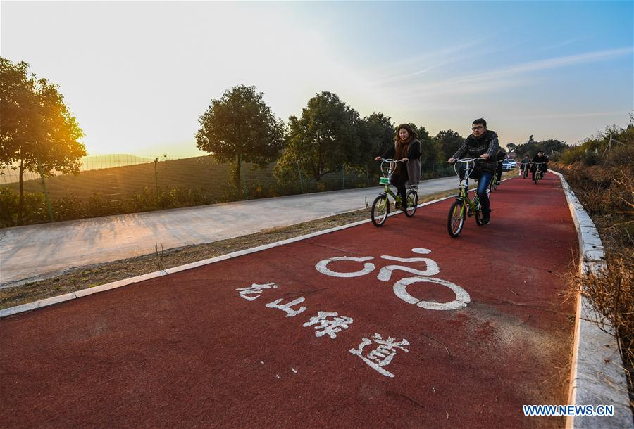 Tourists ride on Yangmei road of Longshan greenway in Longshan Township of Changxing County, east China's Zhejiang Province, Dec. 21, 2017. The 22 kilometers long Longshan greenway, joining different landscapes like tea field, bamboo forest and orchard together, has become a popular rural resort for visitors.(Xinhua/Xu Yu)<br/>