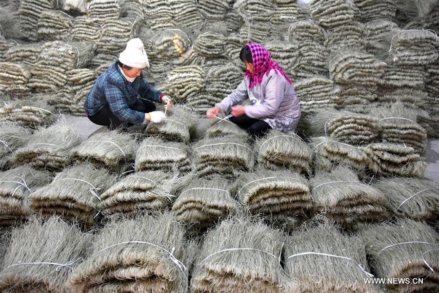 #CHINA-SHANDONG-VERMICELLI PRODUCTION (CN)