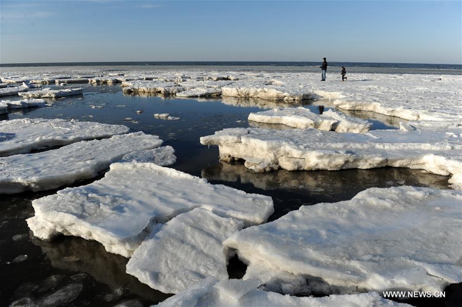 #CHIAN-LIAONING-SEA ICE (CN)