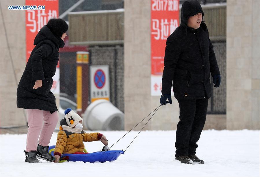 CHINA-NORTHEASTERN REGION-SNOWFALL (CN)