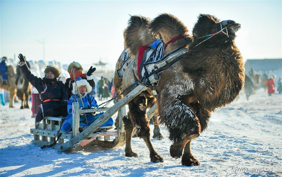 CHINA-INNER MONGOLIA-CAMEL FAIR (CN)