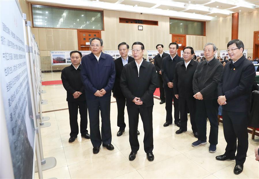 CHINA-ANHUI-ZHANG GAOLI-INSPECTION (CN)