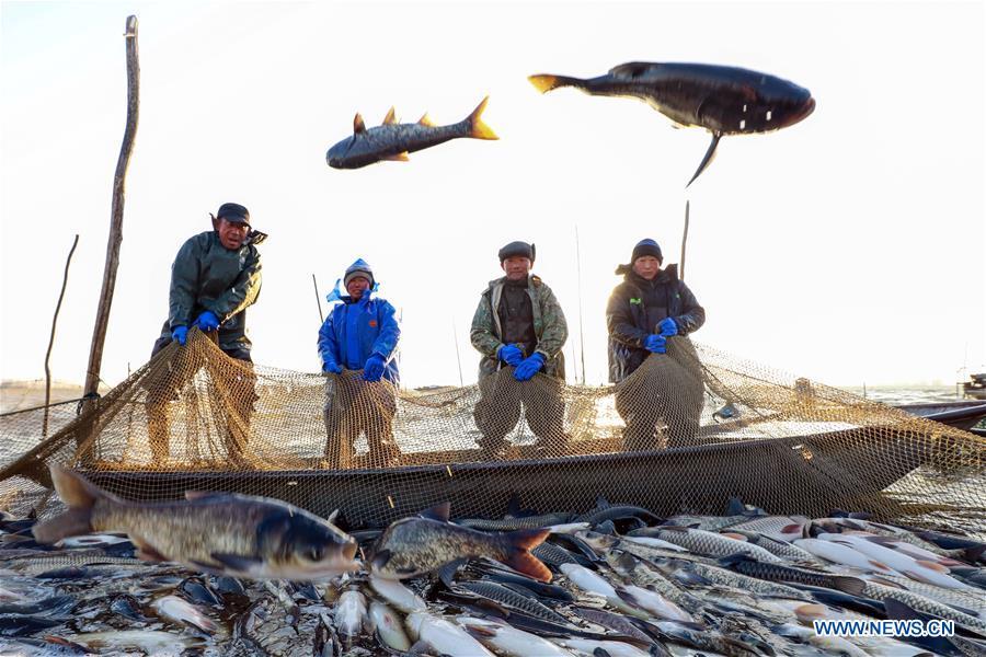 #CHINA-JIANGSU-WINTER FISHING (CN)