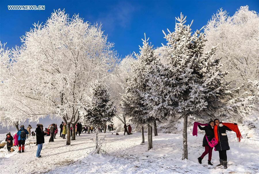 CHINA-JILIN-RIME (CN)