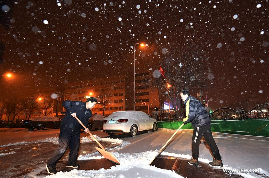CHINA-TIANJIN-SNOWFALL(CN)
